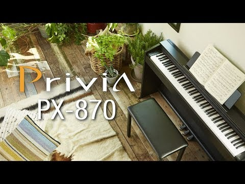 Casio Privia PX-870 Digital Piano