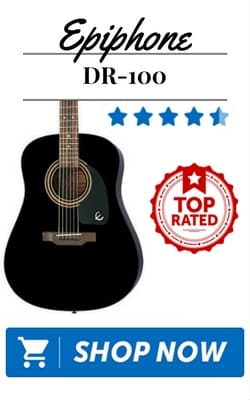 Epiphone DR-100 Top Rated