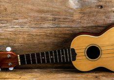 affordable ukulele reviews